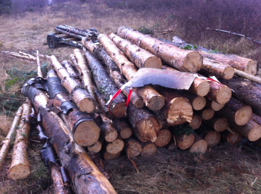 wood for mobile mill